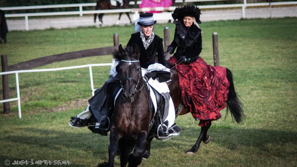 Horses II 2016