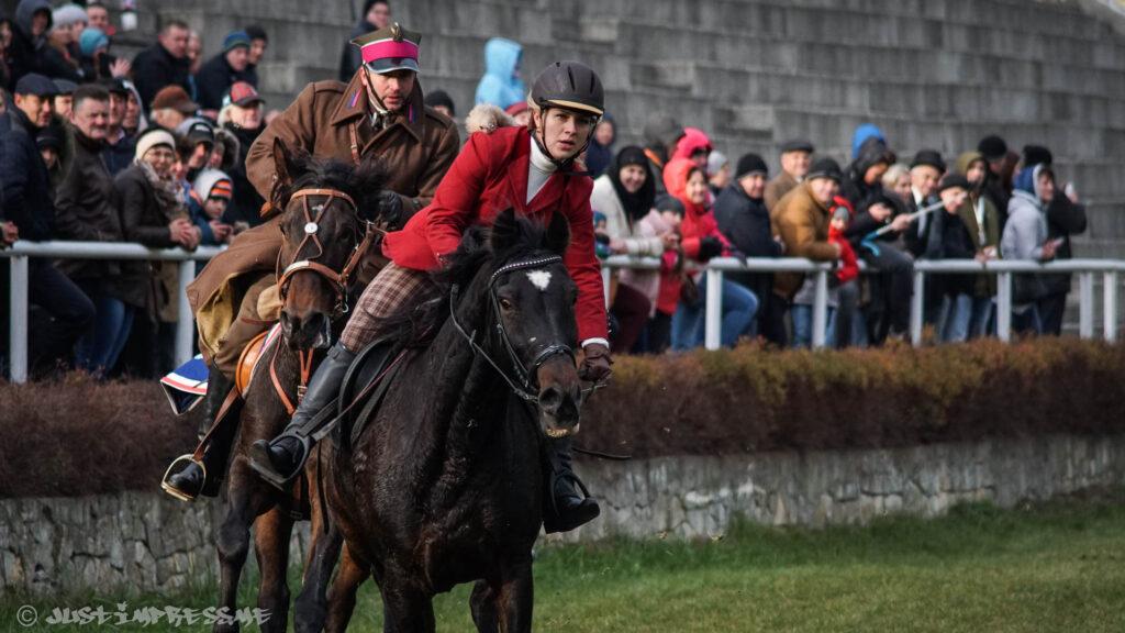 Horses 2016